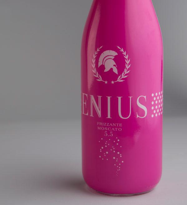 ENNIUS-ROSA02