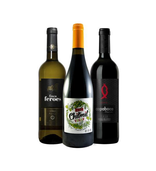 selección especial de vinos de las Bodegas Copaboca